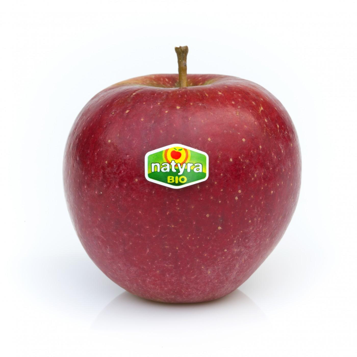 Картинки по запросу В Голландии яблоки «Натира»