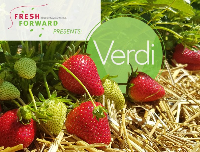 Fresh Forward presents: Verdi