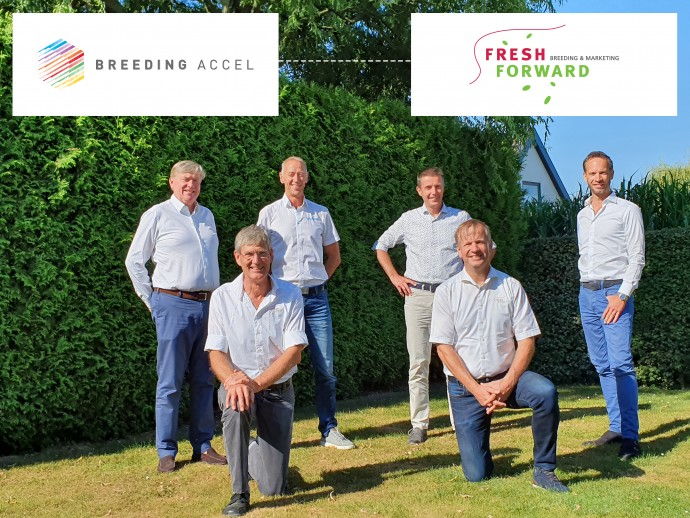 Fresh Forward Breeding sluit aan bij Breeding Accel